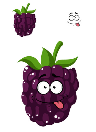 Delicious ripe cartoon blackberry licking its lips in anticipation with a second variation with no face, isolated on white background Vector