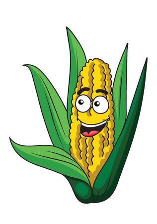 Fresh happy healthy corn on the cob with green leaves and a happy smiling face, isolated on white Vector