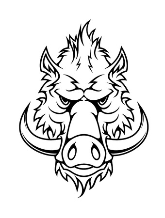 Black and white head of a fierce wild boar with long curving tusks staring directly at the viewer