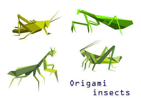 mantis: Set of green origami insects with a grasshopper, praying mantis, mantis and locust, side view colorful cartoon illustration