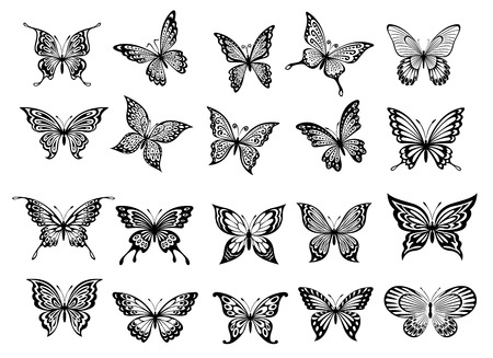 butterfly background: Set of twenty ornate black and white flying butterflies with open wings for use as design elements Illustration