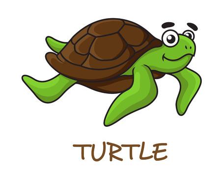 green turtle: Carino felice tartaruga verde con guscio marrone in stile cartoon isolato su bianco