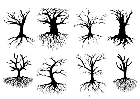 Black bare tree silhouettes with roots isolated over white background, suitable for eco and environment design