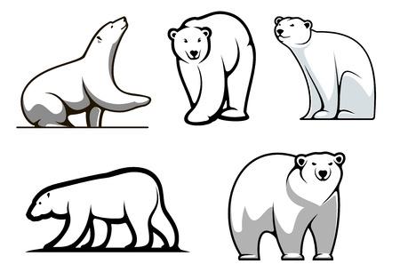 oso caricatura: Osos polares blancos establecidos en el estilo de dibujos animados de la mascota