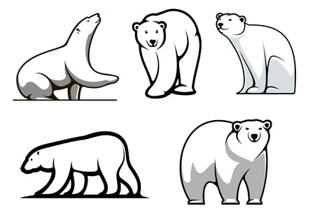 White polar bears set in cartoon style for mascot  Vector