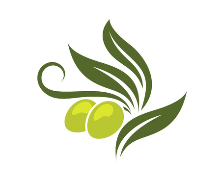 food logo: Green olives branch with leaves isolated on white background for healthy vegetarian food, logo design