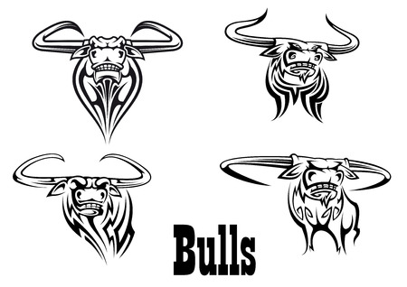 raging bull: Angry black bull mascots ready for attack, isolated on white background for tattoo or team sports design design