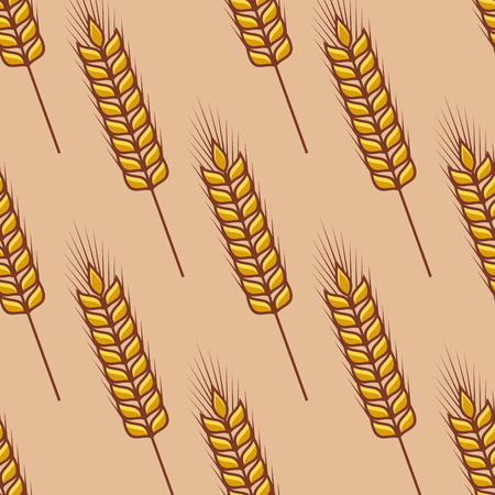 oat field: Seamless pattern of cereal ears got  agriculture, harvest and farming concept