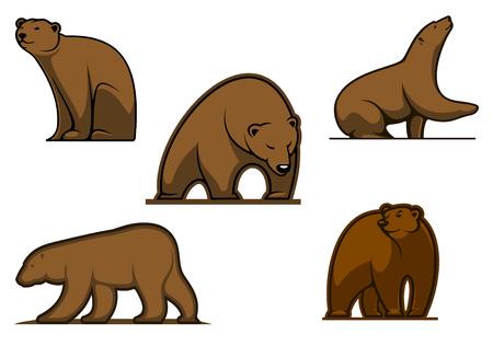 oso caricatura: Personajes de dibujos animados oso de color marrón aislados en el blanco para la vida silvestre y el deporte mascota del equipo de diseño Vectores
