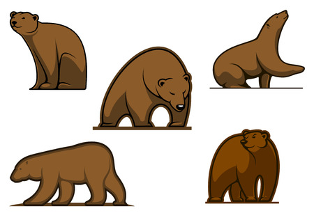 Brown colored cartoon bear characters isolated on white for wildlife and sport team mascot design