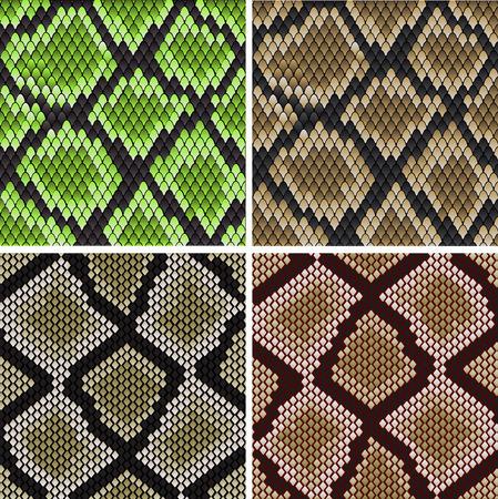 jaszczurka: Jednolite tło zielone i szare wzory skóra węża do projektowania mody i przyrody