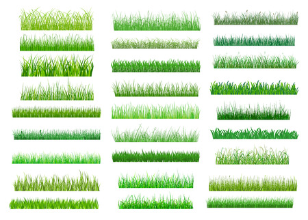 Large set of fresh green spring grass borders in differing shades of green lengths and densities for use as design elements on white Ilustração