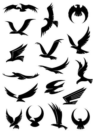 tatouage oiseau: Voler aigle, faucon et icônes de faucon montrant les différentes positions de l'aile en silhouette noire, certaines avec des têtes blanches pour la conception héraldique ou tatouage