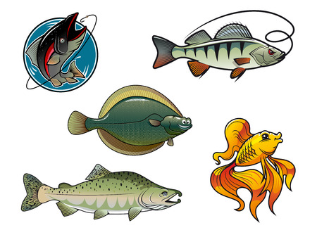 flounder: Five cartoon colored fish characters. Salmon, flounder, perch and goldfish