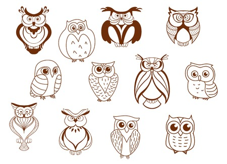 Cute cartoon vector owl characters showing different species with different feathers and plumage, mostly line drawings Vectores