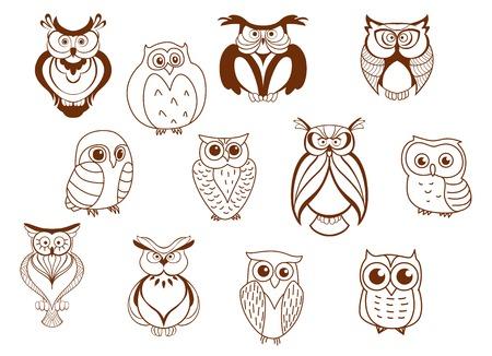 Vector cartoon des personnages mignons de hibou montrant différentes espèces avec différentes plumes et plumage, pour la plupart des dessins au trait Banque d'images - 32712764