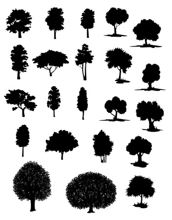 Silhouettes of assorted trees with leafy canopies in different shapes and sizes Çizim