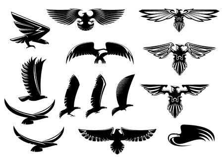 Iconos del vector del águila, halcón y aves halcón que muestran el pájaro volando o con las alas extendidas, con detalle de plumas Vectores