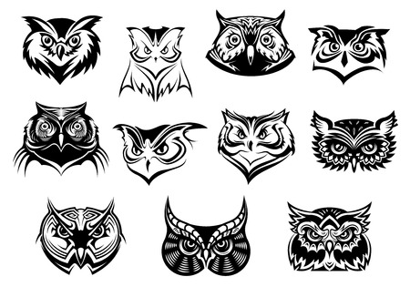 Large set of black and white vector owl heads showing different species and plumage, vector illustration isolated on white