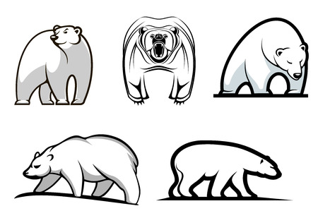 either: Set of cartoon polar bears showing five different stances either standing, walking or frontal threatening in black and white. For mascot, tattoo or emblem design Illustration