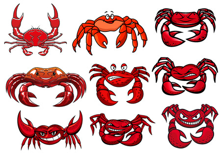 Colorful red cartoon marine crabs set facing the viewer with toothy smiles, for mascot design