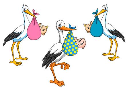 Cicogne Cartoon che trasportano piccoli bambini appena nati per la consegna ragazzo e una ragazza