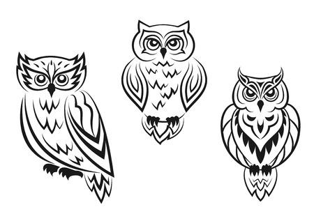 buhos: Tatuajes del pájaro del búho en blanco y negro en el estilo silueta aislados sobre fondo blanco