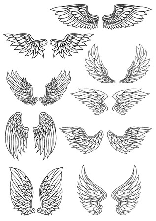 angels: Set of outline heraldic wings in black and white with feather detail for use in heraldry and religion design Illustration