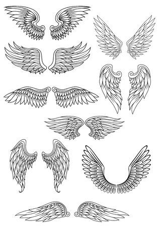 alas de angel: Las alas del pájaro heráldico o ángel conjunto aislado en blanco para el religioso, tatuaje o diseño de la heráldica