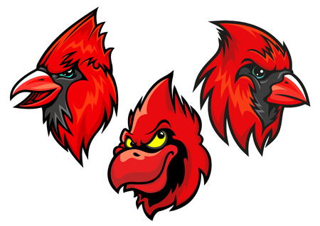 ornithological: Cartooned red cardinal birds heads for sport team mascot or tattoo design Illustration