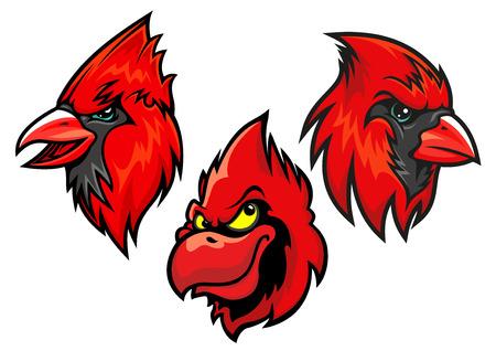 passerine: Cartooned red cardinal birds heads for sport team mascot or tattoo design Illustration