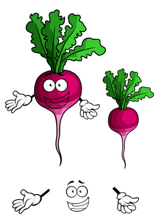sappy: Cheerful cartoon radish vegetable character with green sappy leaves and happy smile suited for healthy nutrition concept and vegetarian menu design