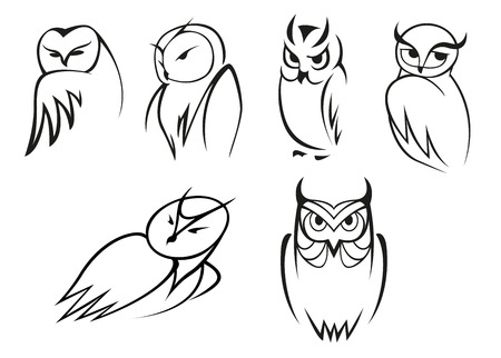 Outline cartoon owl birds in different poses for educational concept, mascot  design Illustration