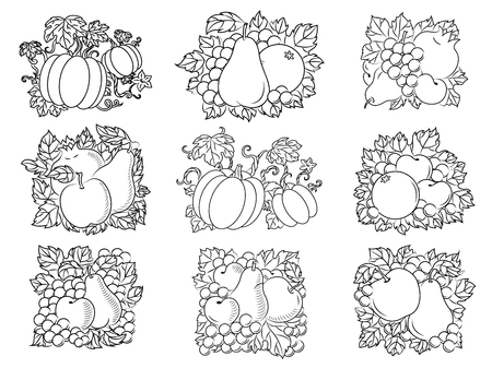 apples and oranges: Retro fruit and vegetable sketch compositions of fresh apples, pears, pumpkins, pomegranates, apricots, oranges and grapes with leaves