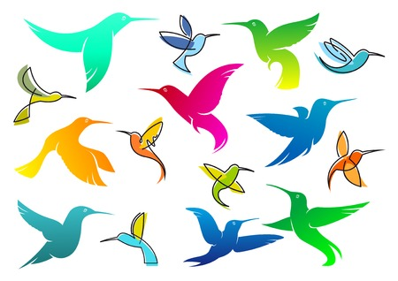 Colorful silhouettes of flying hummingbird birds isolated on white suitable for logo or wildlife design Illustration