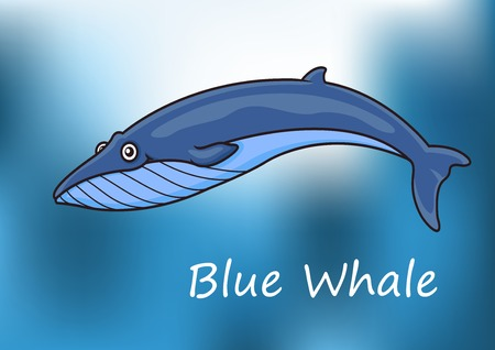 baleen whale: Cartoon blue whale swimming underwater with dappled sunlight and the text Blue Whale below
