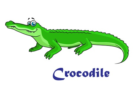 gator: Colorful green cartoon crocodile character with text Crocodile below Illustration