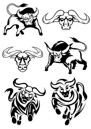 Black and white bulls or buffaloes in various poses as two heads, two charging and two with heads lowered threateningly