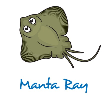 sting: Cartoon manta ray viewed from above with large eyes and text Manta Ray below
