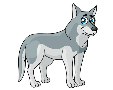 sideways: Cartoon grey wolf standing sideways looking at the viewer with blue eyes, suitable for kids design Illustration