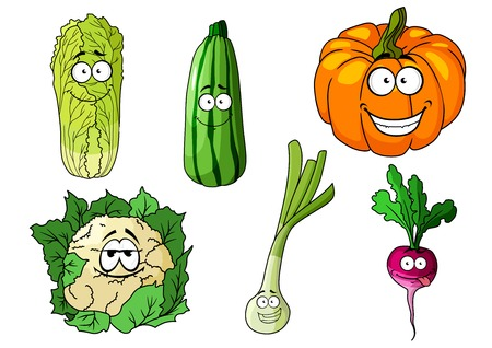 cos: Happy colorful fresh cartoon vegetables including a cucumber, pumpkin, cauliflower, onion, radish and cos lettuce