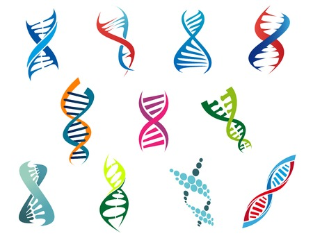 Colorful vector DNA molecules and symbols showing the coiled helix structure on a white background