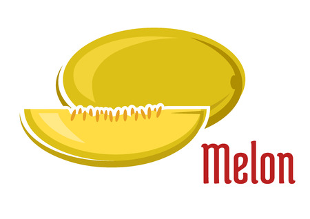 펄프: 슬라이스 보여주는 주스 부드러운 펄프 및 붉은 자막 멜론 흰색 배경에 고립 된 만화 스타일의 씨앗 노란색 향기 익은 멜론 과일 일러스트