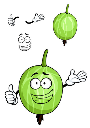 fruit stalk: Fresh cartoon gooseberry fruit character depicting green striped berry with stalk and another variant with separated elements Illustration