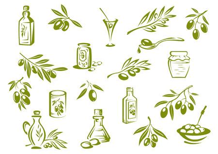 olive leaf: Elementos de diseño de olivo verde que muestra el aceite de oliva en botellas de vidrio, las aceitunas en vinagre en jarras y las ramas con hojas puntiagudas y aceitunas