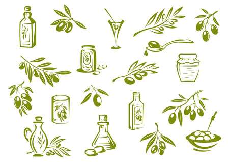 branch isolated: Green olive design elements showing olive oil in glass bottles, pickled olives in jars and branches with pointed leaves and olives