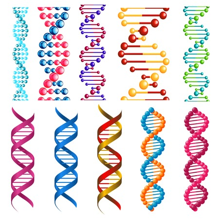 biology cell: Colorful DNA molecules showing the helical structure or twisted spiral decorative patterns in seamless vertical patterns for borders and frames Illustration