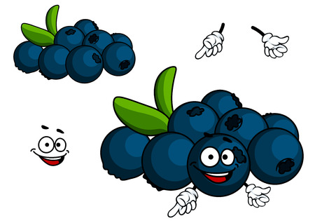 whortleberry: Cartoon Blueberry fruit character with face and hands isolated on white background Illustration