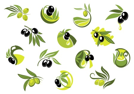 Olive tree branches with green and black glossy fruit, leaves and drops of oil for healthy nutrition concept and food pack design Illustration