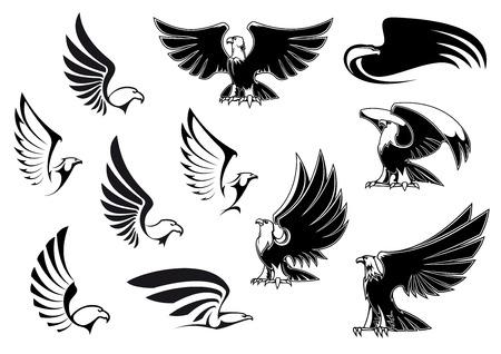 halcones: Siluetas del �guila que muestra el vuelo y las aves de pie con las alas extendidas en el estilo de dibujo de esquema para el logotipo, tatuaje o dise�o her�ldico